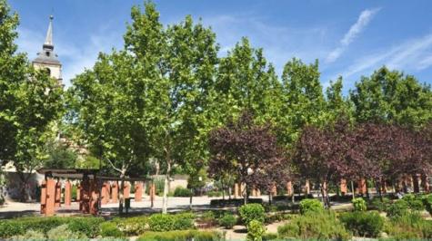 Grupo sanjose noticias for Cementerio jardin de alcala de henares