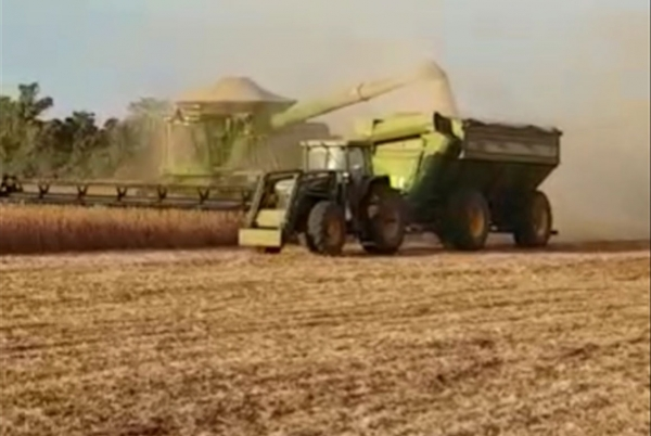 Completion of the soy harvest in Jerovia